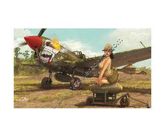 Warhawk P-40N